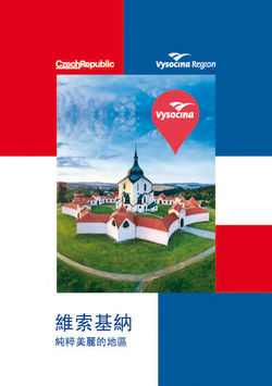 VYSOCINA CHINA_WEB