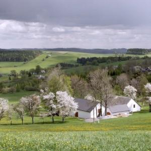 Jaro na Blatinách, Žďárské vrchy